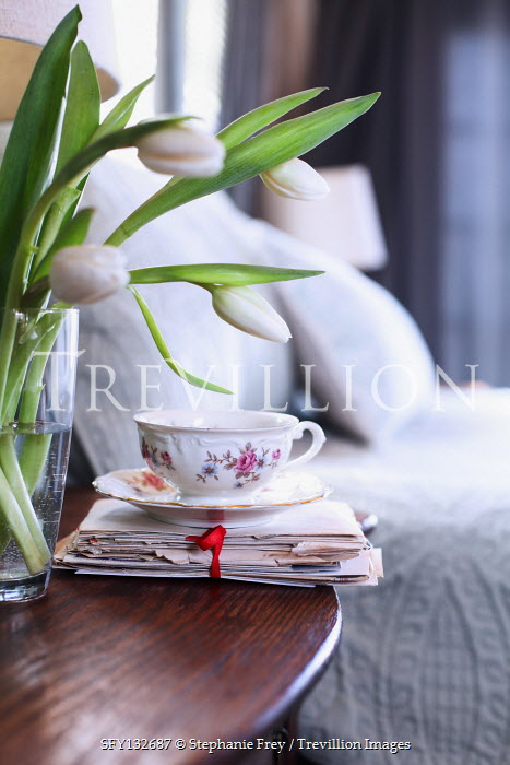 Stephanie Frey TEACUP ON PILE OF LETTERS IN BEDROOM WITH TULIPS Miscellaneous Objects