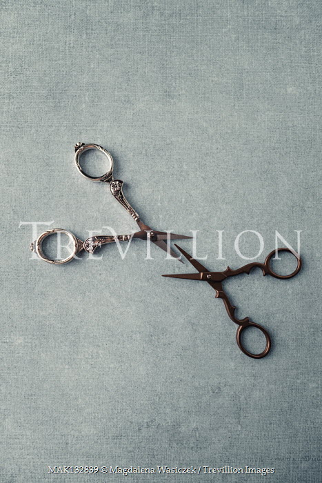 Magdalena Wasiczek TWO PAIRS OF SMALL SCISSORS Miscellaneous Objects