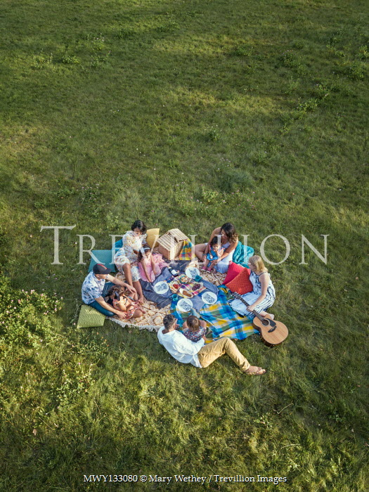 Mary Wethey FAMILY AND FRIENDS WITH PICNIC IN FIELD Groups/Crowds