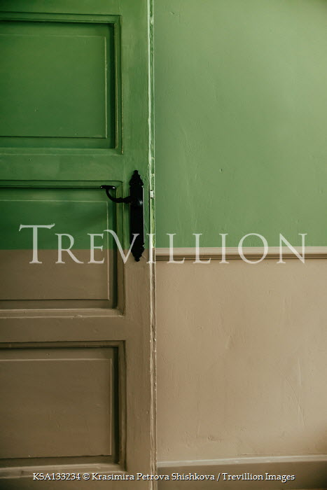 Krasimira Petrova Shishkova Green wooden door