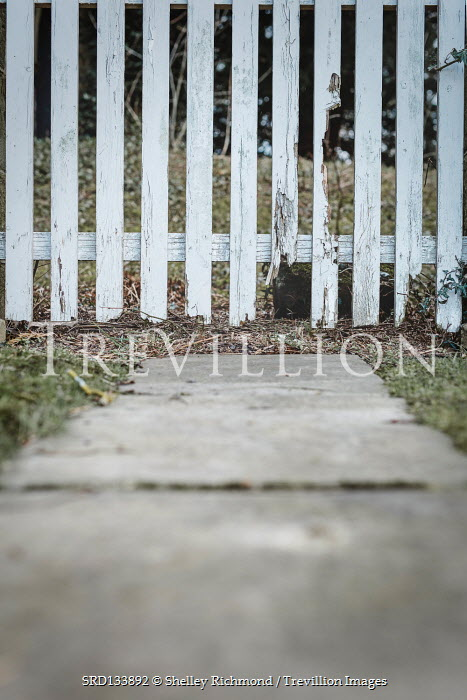 Shelley Richmond STONE PATH AND BROKEN PICKET FENCE
