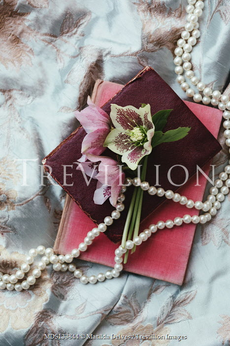 Matilda Delves FLOWERS BOOKS AND PEARLS ON EMBROIDERED FABRIC