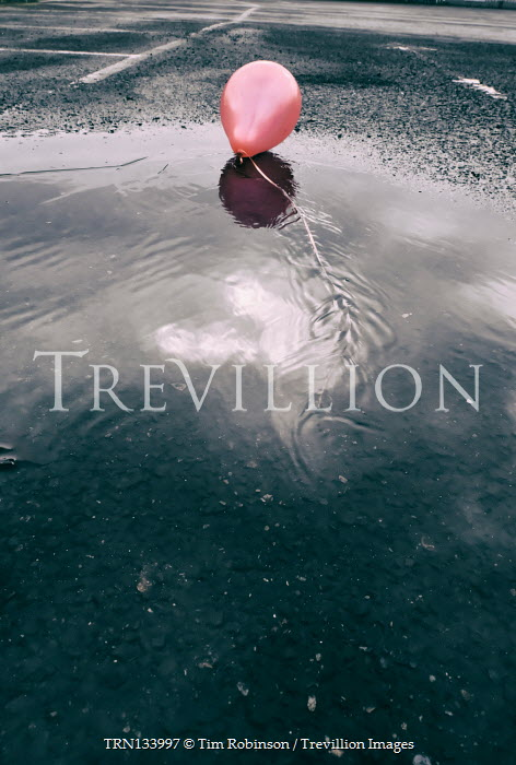 Tim Robinson PINK BALLOON LYING IN CAR PARK PUDDLE