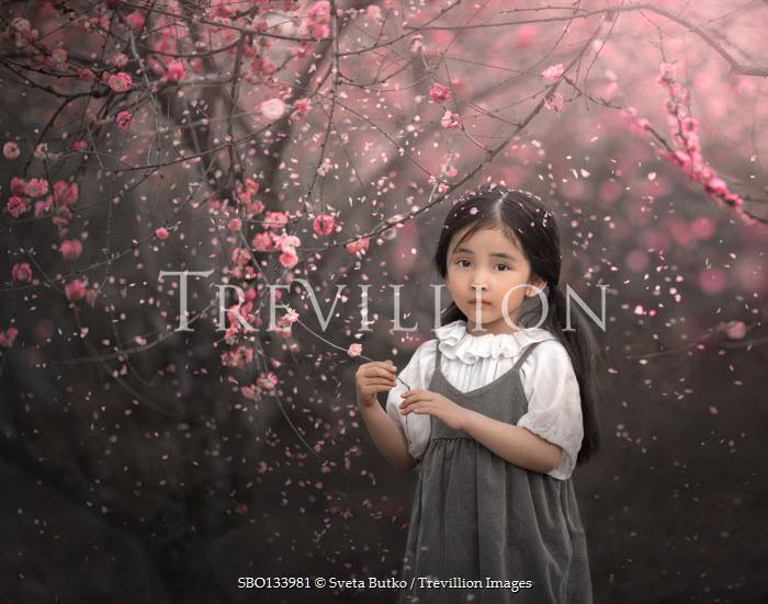 Sveta Butko LITTLE ASIAN GIRL BY TREES IN BLOSSOM