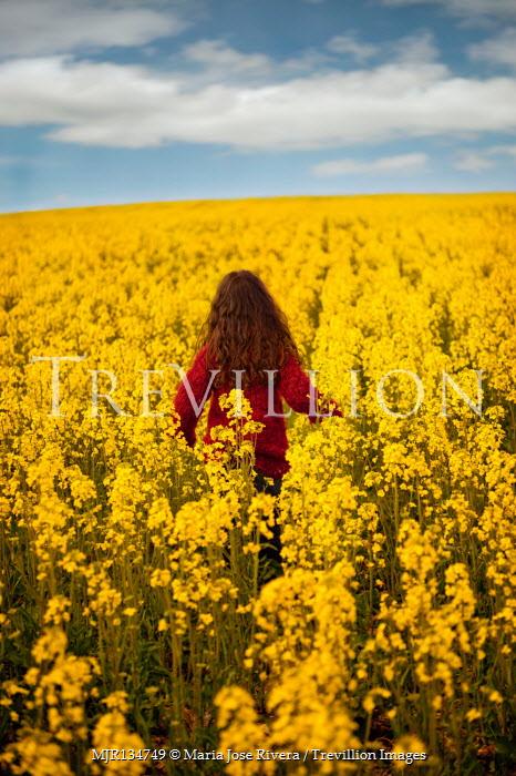 Maria Jose Rivera Girl in red sweater walking in field of yellow flowers