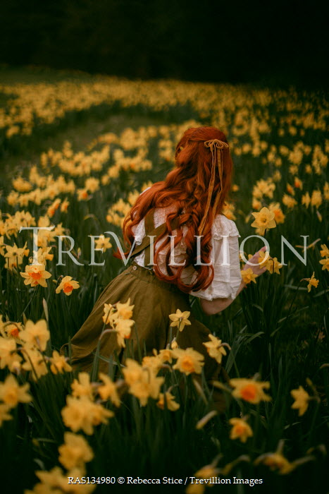 Rebecca Stice WOMAN WITH RED HAIR IN DAFFODIL FIELD