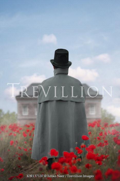 Ildiko Neer Historical man standing in meadow by mansion