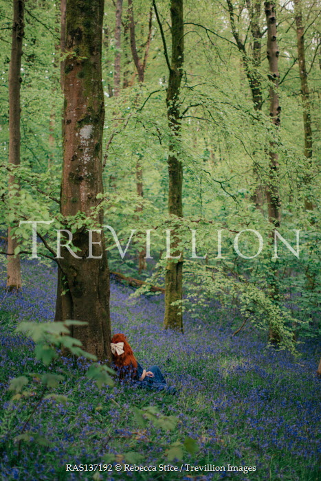 Rebecca Stice GIRL WITH RED HAIR SITTING IN FOREST WITH BLUEBELLS