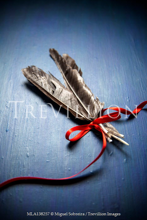 Miguel Sobreira FEATHERS TIED WITH RED RIBBON