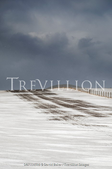 David Baker SNOWY FIELDS WITH FENCE AND STORMY SKY