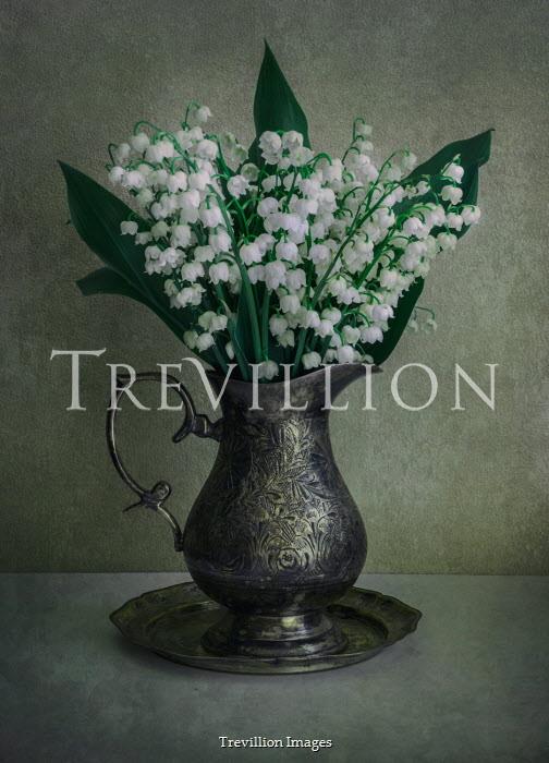 Jaroslaw Blaminsky WHITE FLOWERS IN SILVER JUG