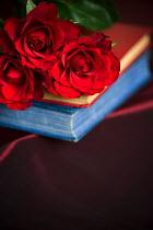 Lee Avison RED ROSES ON BOOK PILE Flowers/Plants