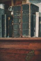 Maren Becker ANTIQUE BOOKS ON BUREAU Miscellaneous Objects