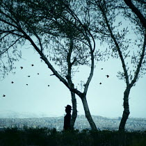 Esmahan Ozkan SILHOUETTE OF WOMAN UNDER TREE Women