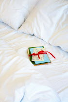 Ilona Wellmann LETTERS TIED WITH RIBBON ON UNMADE BED Miscellaneous Objects