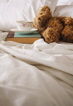 Amy Weiss BOOK, CUP AND TEDDY ON MESSY BED Miscellaneous Objects
