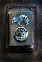 Jill Battaglia Vintage watch parts on stack of old books Miscellaneous Objects