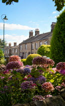 Vesna Armstrong VILLAGE HOUSES BEHIND COLOURFUL FLOWERS Houses