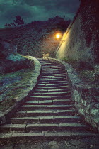 Drunaa OLD STONE STEPS WITH TREES ON HILLOP Paths/Tracks