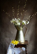 Vesna Armstrong FLOWERS IN DECORATIVE JUG Flowers