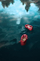 Ildiko Neer Child's red shoes floating in pond Miscellaneous Objects