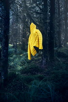 Andy & Michelle Kerry YELLOW JACKET HANGING ON TREE Miscellaneous Objects