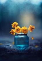 Ashraful Arefin YELLOW FLOWERS IN BLUE JAR Flowers