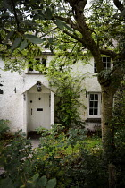 Vesna Armstrong EXTERIOR OF WHITE COTTAGE WITH TREE Houses