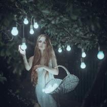 Anya Anti WOMAN PICKING LIGHT BULBS FROM TREE Women