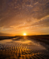 Adrian Leslie Campfield EMPTY SANDY BEACH AT SUNSET Seascapes/Beaches