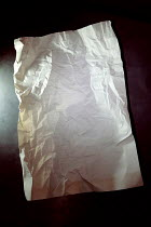 Ute Klaphake CRUMPLED WHITE BLANK PAPER Miscellaneous Objects