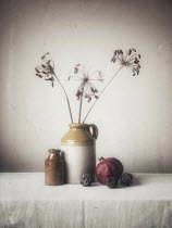 Vesna Armstrong DRIED SEEDS POMEGRANITE AND POTTERY JUGS Miscellaneous Objects
