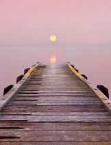 Adrian Leslie Campfield WOODEN JETTY LEADING OUT TO LAKE Seascapes/Beaches