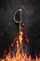 AlcainoCreative ANTIQUE SWORD ON FIRE Weapons