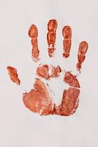 Jaroslaw Blaminsky RED HAND PRINT Miscellaneous Objects