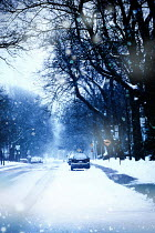 Sandra Cunningham CARS PARKED IN SNOWY URBAN STREET WITH TREES Streets/Alleys