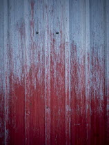 David Baker CLOSE UP OF CORRUGATED IRON WITH BLOOD Building Detail