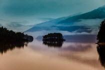 Des Panteva ISLAND WITH TREES IN LAKE AT DUSK Lakes/Rivers