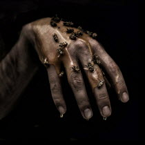 Marko Nadj HAND DRIPPING WITH HONEY AND DEAD BEES Body Detail