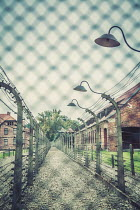 Joanna Czogala PATHWAY WITH FENCES IN CONCENTRATION CAMP Miscellaneous Buildings