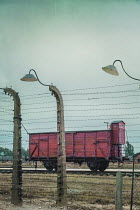 Joanna Czogala TRAIN BY BARBED WIRE OF CONCENTRATION CAMP Railways/Trains