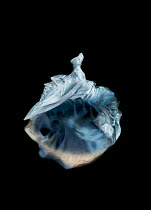 Meg Cowell FLOATING WHITE SILKY BALL GOWN Miscellaneous Objects