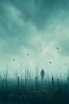 Silas Manhood SILHOUETTED MAN WALKING IN MISTY COUNTRYSIDE Men