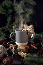 Galya Ivanova DRINK AND BISCUITS WITH FIR TREE AND CONES Miscellaneous Objects