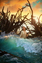 Terrence Drysdale WOMAN BY FALLEN TREES IN SEA AT SUNSET Women