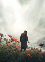 Mark Owen SOLDIER WITH GUN IN FIELD OF POPPIES
