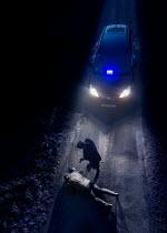 CollaborationJS POLICEMAN POINTING GUN AT MAN ON ROAD AT NIGHT