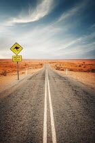 Evelina Kremsdorf ROAD IN DESERT WITH KANGAROO SIGN